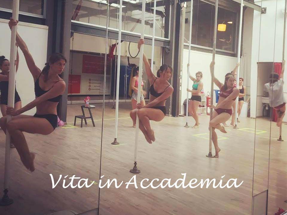 Vita-in-Accademia
